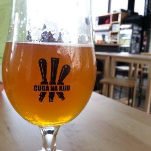 piwa-rzemieslnicze-w-pubie-2